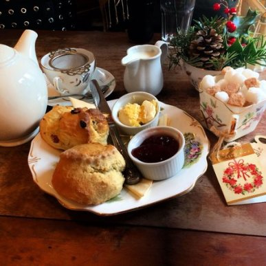 Pettigrew Tea Room Scones